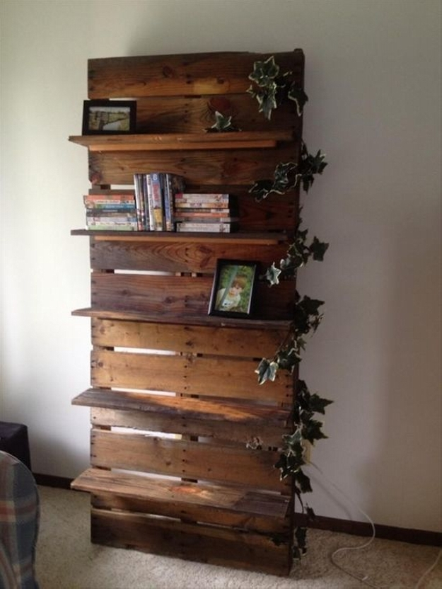 stunning pallet shelf
