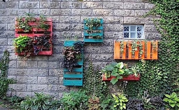 wall planters with pallets